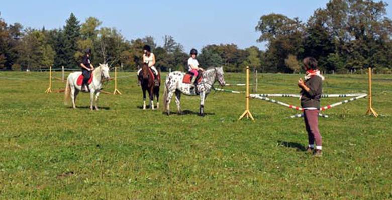 paddock-centre-equestre-lespinas